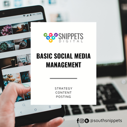 Social Media Management by Snippets